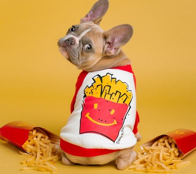 【Kettle Foods】iHerbアイハーブのチップスランキング上位を食べ比べ!